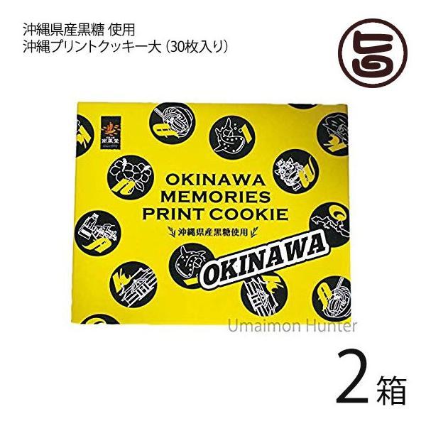 沖縄プリントクッキー大×2箱 沖縄土産 人気 お菓子 焼き菓子 クッキー 土産 バラマキ 個包装 条件付き送料無料