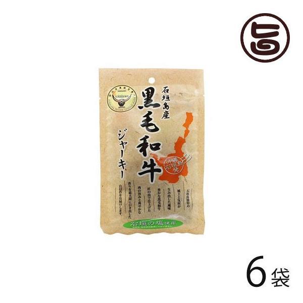 石垣島産 黒毛和牛ジャーキー 40g×6袋 沖縄 人気 定番 おつまみ 珍味 送料無料