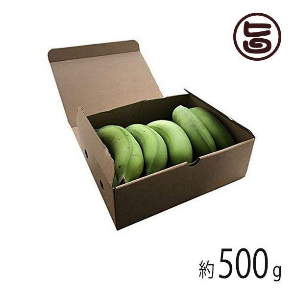 期間限定 沖縄県産 島バナナ 約500g相当分 希少 国産 バナナ 沖縄 無農薬栽培 送料無料