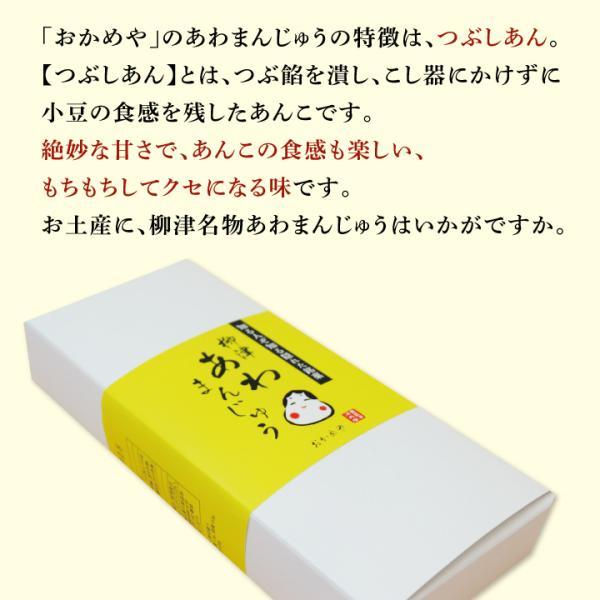 柳津名物 おかめや あわまんじゅう 10個×2箱 【クール便】 umaimonoaizu 04