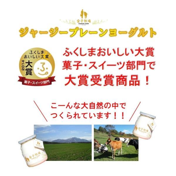 【クール便】金子牧場 食べると幸せゴールデンヨーグルト 大(480g)×3個セット|umaimonoaizu|02