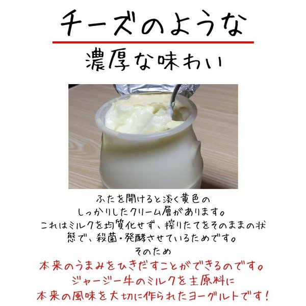 【クール便】金子牧場 食べると幸せゴールデンヨーグルト 大(480g)×3個セット|umaimonoaizu|03
