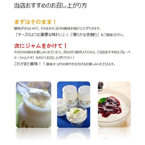 【クール便】金子牧場 食べると幸せゴールデンヨーグルト 大(480g)×3個セット|umaimonoaizu|04