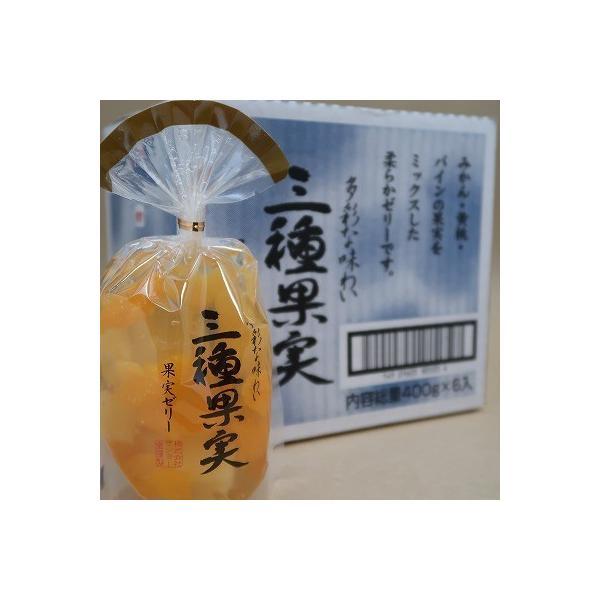 サンヨー堂 多彩な味わいの 三種果実ゼリー 400g×6個セット ギフトにも最適な包装無料サービス対応品