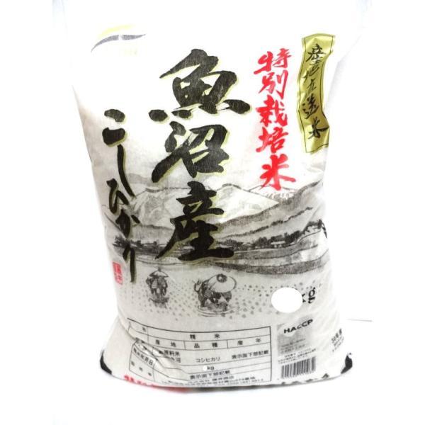 【送料無料】令和2年度産3キログラム×20  新米特別栽培米魚沼産こしひかり