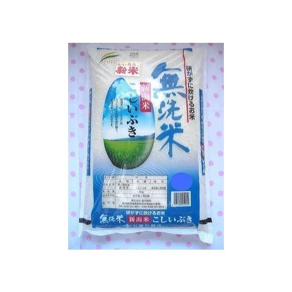 【送料無料】令和3年度産 無洗米5キログラム ×26新米 新潟県産こしいぶき