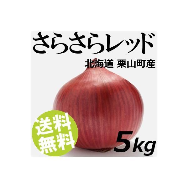 赤玉ねぎ さらさらレッド 5kg 20〜25玉 北海道栗山町 健康たまねぎ 送料無料 贈答品 お取り寄せ