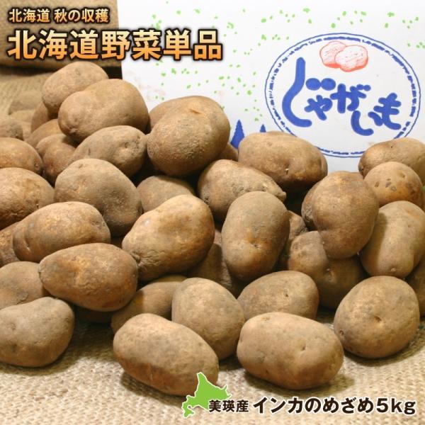 新じゃがいも ジャガイモ インカのめざめ約5kg(2S〜2L) 送料無料 北海道美瑛産 減農薬栽培 北海道より直送 インカ じゃが芋 いも イモ 馬鈴薯
