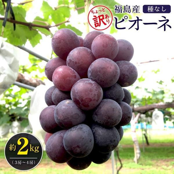 ちょっと訳あり種無しピオーネ 約2kg(3房〜4房)送料無料 福島産 ご家庭用 1房約500g〜700g前後 ※訳あり わけあり 葡萄、ぶどう、ブドウ