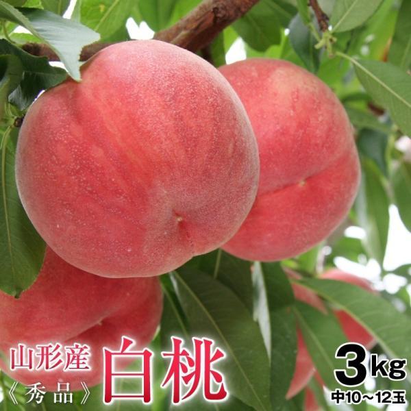 桃 白桃 山形県産白桃約3kg秀品(10〜12玉前後)中玉 送料無料 もも 白桃 モモ