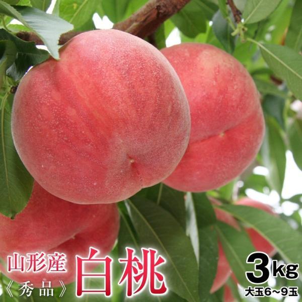 桃 白桃 山形県産白桃約3kg秀品(6〜9玉前後)大玉 送料無料 もも 白桃 モモ