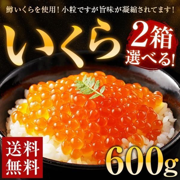 いくら 600g 鱒 送料無料 醤油漬け 辛子漬け イクラ ギフト 海鮮 食品 お土産 お返し 小粒 丼 グルメ 訳あり わけあり 500g以上 お取り寄せ