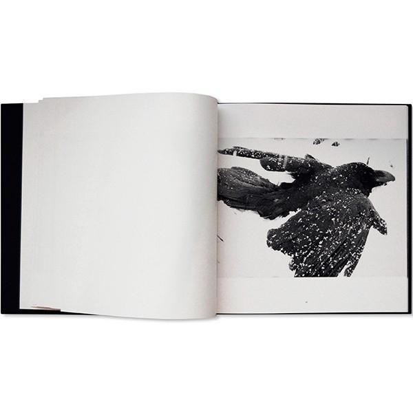 深瀬昌久『鴉 RAVENS』|umd-tsutayabooks|02