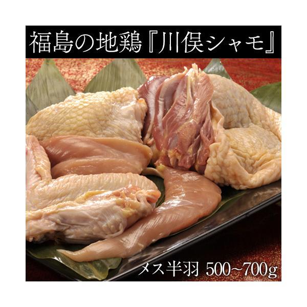 肉 鶏肉 ギフト 福島県 地鶏 川俣シャモ バラシ半羽 メス  500グラム以上 冷蔵|umeebeccyasannriku