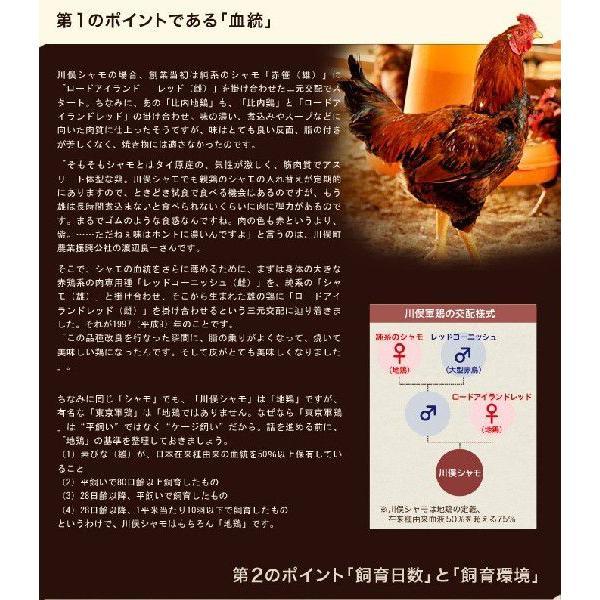 肉 鶏肉 ギフト 福島県 地鶏 川俣シャモ バラシ半羽 メス  500グラム以上 冷蔵|umeebeccyasannriku|04
