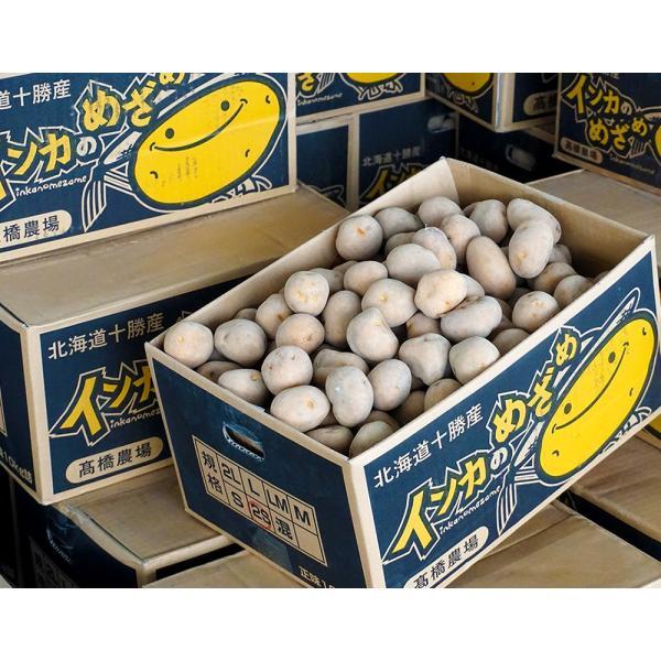 北海道 十勝産 インカのめざめ 越冬熟成 じゃがいも 芋 SSサイズ 約10kg 常温|umeebeccyasannriku|04