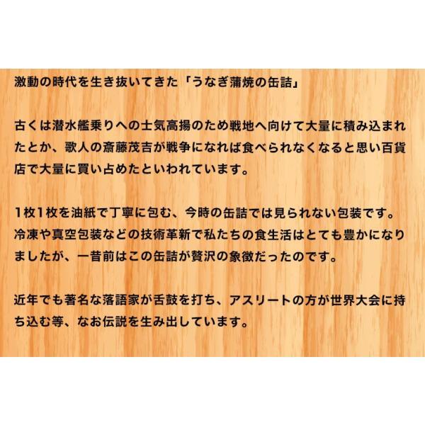 昭和9年創業 浜名湖食品『うなぎ蒲焼缶詰(浜名湖産うなぎ使用)』100g ×1個 ※常温|umeebeccyasannriku|03