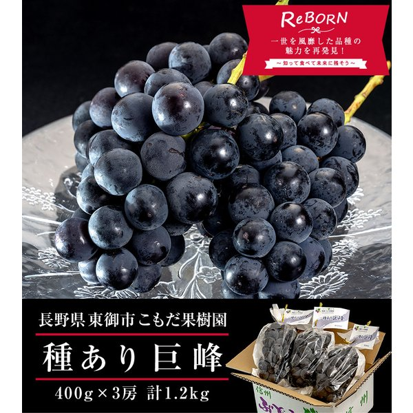 ぶどう ブドウ 葡萄 巨峰 長野県 東御こもだ果樹園 種あり巨峰 約400g×3房 約1.2kg 送料無料|umeebeccyasannriku|02