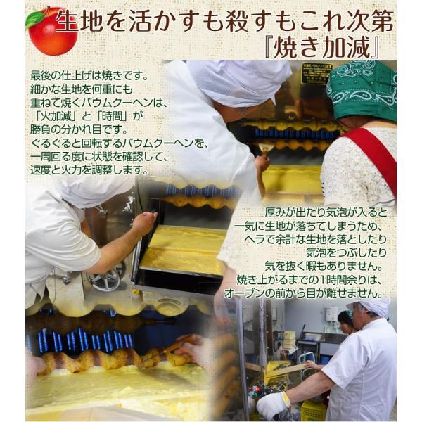 菓子 ギフト 送料無料 バームクーヘン りんご リアスのりんごの木 1個 900g前後 冷蔵|umeebeccyasannriku|06