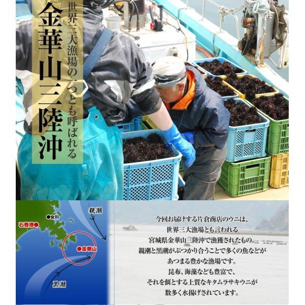 海鮮 送料無料 うに ウニ 宮城県産 お造り生うに 5個セット (1個100g前後) 産地直送 冷蔵|umeebeccyasannriku|03