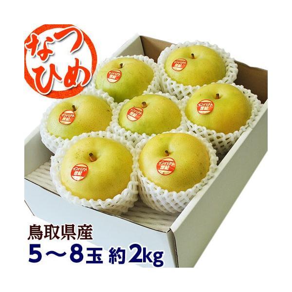 梨 なし 鳥取県産 新品種梨 なつひめ 約2kg(5〜8玉) ※冷蔵 送料無料|umeebeccyasannriku