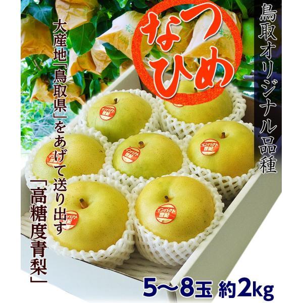 梨 なし 鳥取県産 新品種梨 なつひめ 約2kg(5〜8玉) ※冷蔵 送料無料|umeebeccyasannriku|02