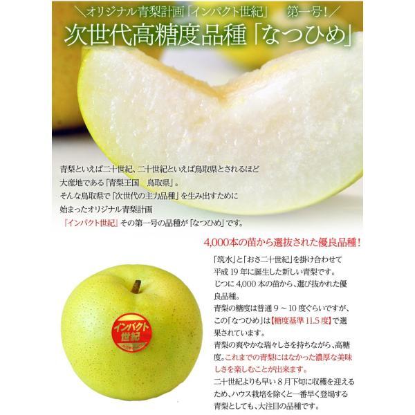 梨 なし 鳥取県産 新品種梨 なつひめ 約2kg(5〜8玉) ※冷蔵 送料無料|umeebeccyasannriku|03