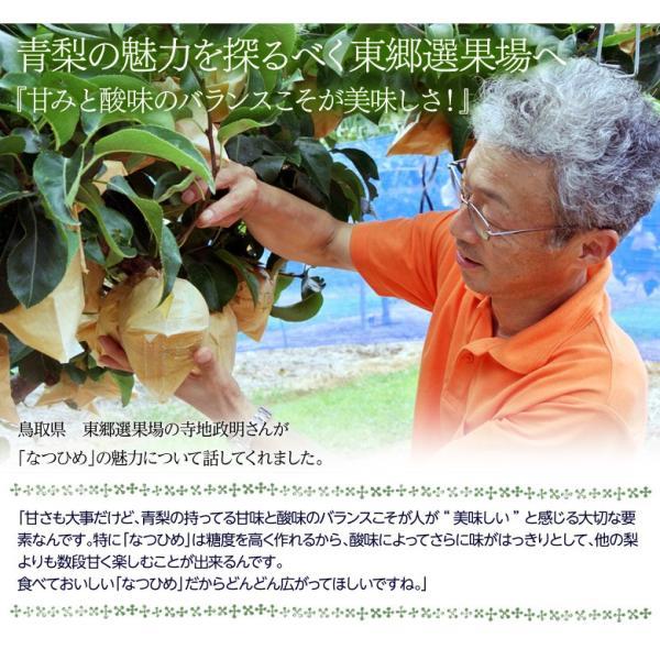 梨 なし 鳥取県産 新品種梨 なつひめ 約2kg(5〜8玉) ※冷蔵 送料無料|umeebeccyasannriku|04