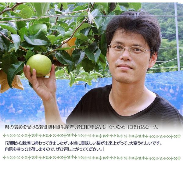 梨 なし 鳥取県産 新品種梨 なつひめ 約2kg(5〜8玉) ※冷蔵 送料無料|umeebeccyasannriku|05