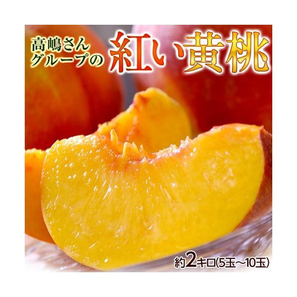 桃 黄桃 もも おうとう モモ 山形県産 高嶋さんグループの紅い黄桃 無袋黄桃 約2kg(5〜10玉) 送料無料|umeebeccyasannriku