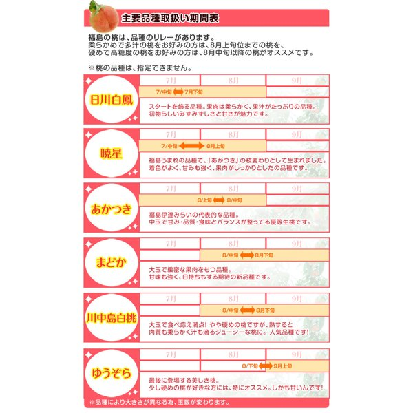 桃 果物 詰め合わせ 福島県産 伊達の桃 特秀品 約1.5kg×2箱 (1箱5〜10玉) 送料無料|umeebeccyasannriku|08
