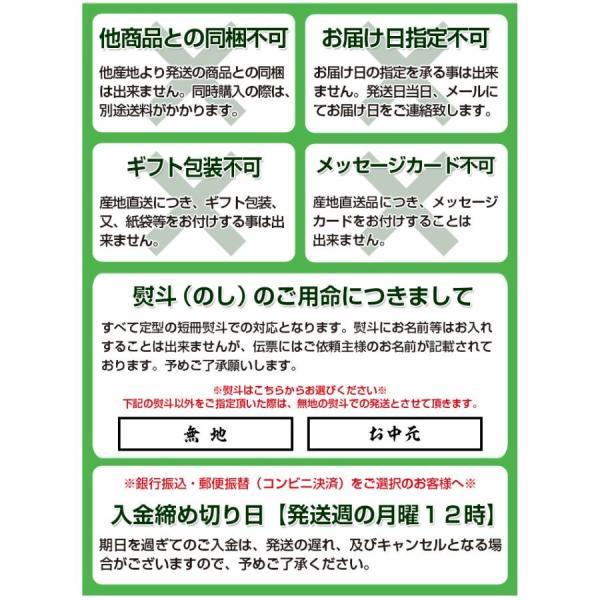 青森県産 つがりあんメロン アムさん 秀品 2玉 (1玉 約1.3kg) 送料無料|umeebeccyasannriku|13