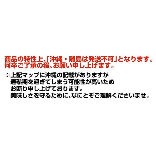 青森県産 つがりあんメロン アムさん 秀品 2玉 (1玉 約1.3kg) 送料無料|umeebeccyasannriku|15