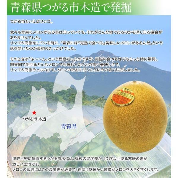 青森県産 つがりあんメロン アムさん 秀品 2玉 (1玉 約1.3kg) 送料無料|umeebeccyasannriku|05