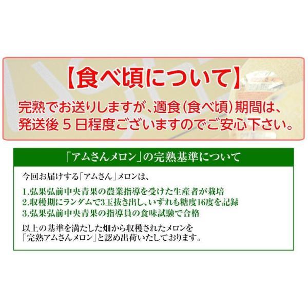 青森県産 つがりあんメロン アムさん 秀品 2玉 (1玉 約1.3kg) 送料無料|umeebeccyasannriku|09
