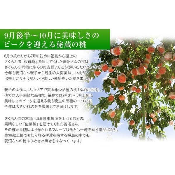 もも 桃 福島県産 菱沼農園 さくら白桃 秀品 約2kg (5〜7玉入) 送料無料 常温 umeebeccyasannriku 02