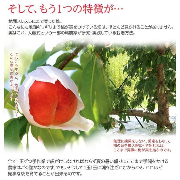 もも 桃 福島県産 菱沼農園 さくら白桃 秀品 約2kg (5〜7玉入) 送料無料 常温 umeebeccyasannriku 05