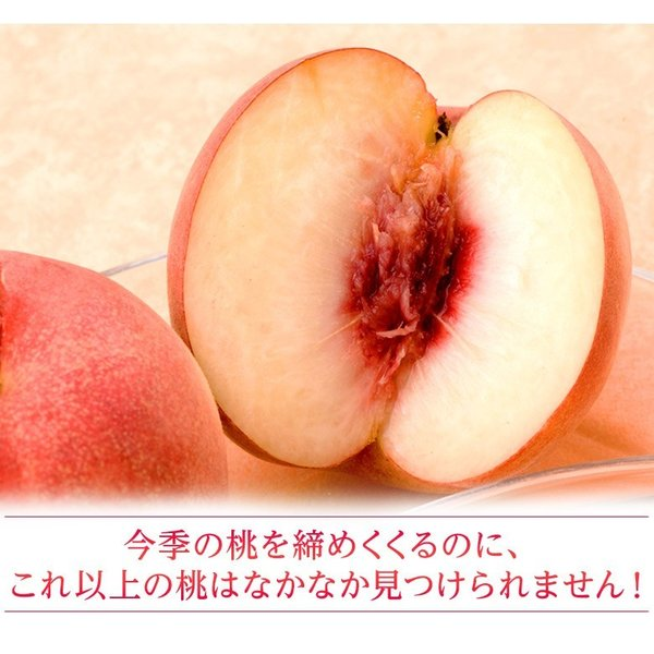 もも 桃 福島県産 菱沼農園 さくら白桃 秀品 約2kg (5〜7玉入) 送料無料 常温 umeebeccyasannriku 06