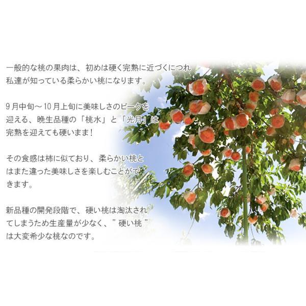 もも 桃 福島県産 菱沼農園 桃水&光月 約2kg (6〜8玉入) 送料無料 常温|umeebeccyasannriku|03