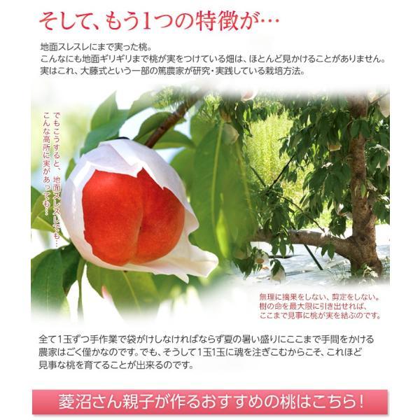 もも 桃 福島県産 菱沼農園 桃水&光月 約2kg (6〜8玉入) 送料無料 常温|umeebeccyasannriku|07