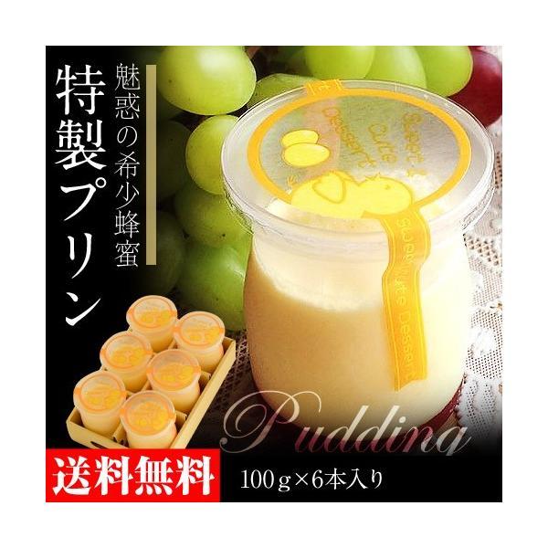 スイーツ お菓子 ギフト 魅惑の希少蜂蜜 会津ゆめごこちプリン 100g×6本セット 送料無料 冷凍