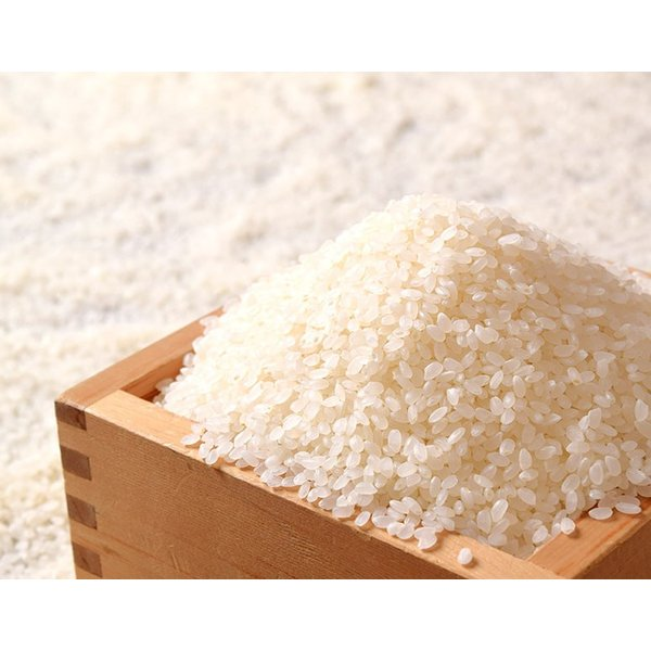 米 福島県産 精米 カトウファーム 天のつぶ 5kg|umeebeccyasannriku|04