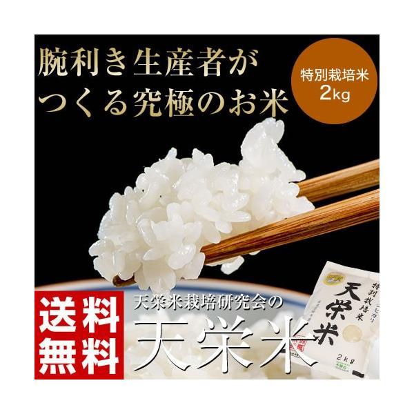 送料無料 福島県産 特別栽培米天栄米 2キロ 精米|umeebeccyasannriku