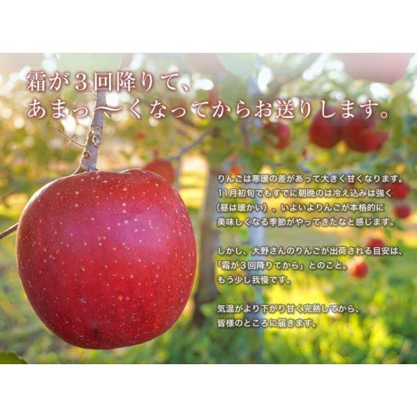 りんご 林檎 リンゴ 訳あり 大野農園 復活アップル サンふじりんご 福島県石川町産 約3kg 8〜10玉 送料無料 常温 産地直送|umeebeccyasannriku|10