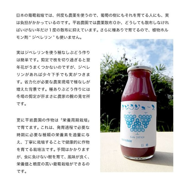 平岩農園 「種ありぶどうだけで作る6種のぶどうジュース」 180ml瓶×6本 ※常温 送料無料|umeebeccyasannriku|06