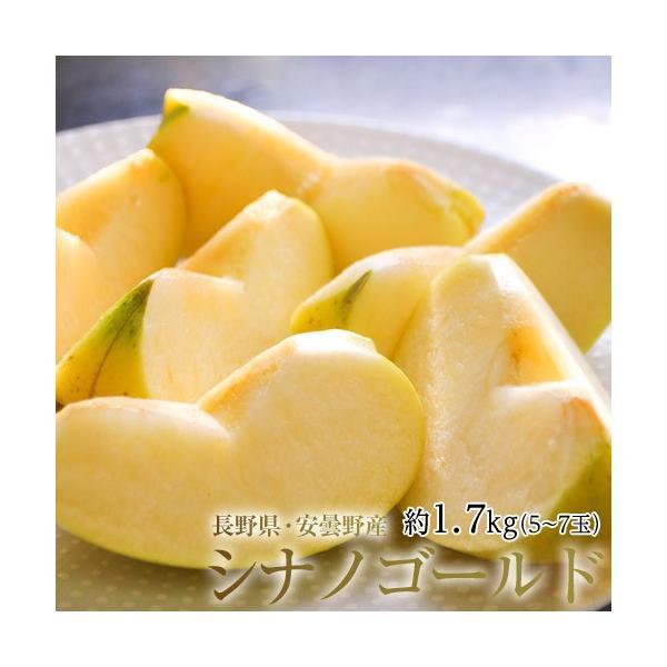 長野県安曇野産 りんご『シナノゴールド』 約1.7kg 風袋込み(5〜7玉)産地箱 ※常温 送料無料