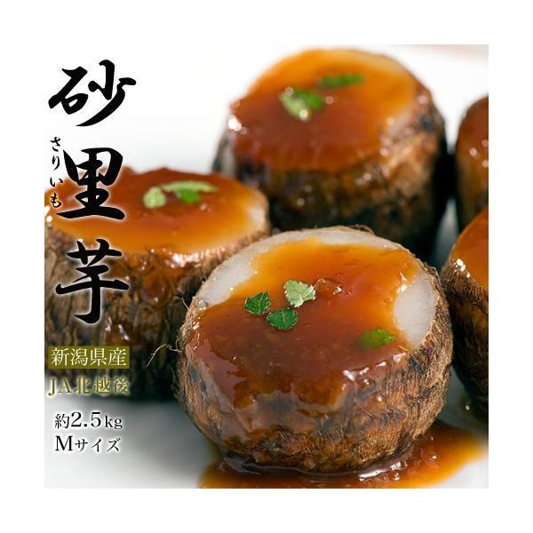里芋 さといも サトイモ ブランド 里芋 新潟県産 砂里芋(さりいも) Mサイズ 約2.5kg|umeebeccyasannriku