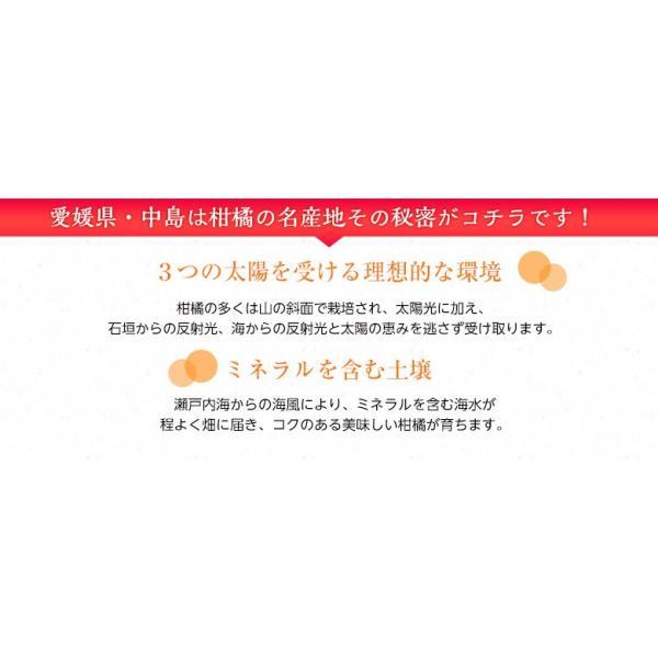 柑橘 フルーツ 愛媛県 中島地域産 訳あり せとか 約5kg S〜3Lサイズ 目安として16〜33玉 常温 送料無料|umeebeccyasannriku|04