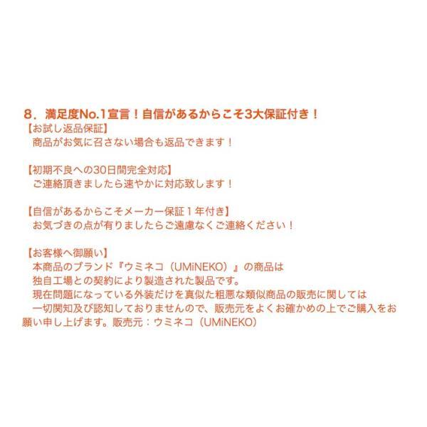 ヒッププロテクター バイク スノーボード スノボ インナー 各サイズ ウミネコ 衝撃吸収PVC&EVA 尻 腰 5点保護 メンズ 女 初心者 ケツパッド|umineko-shoji|05