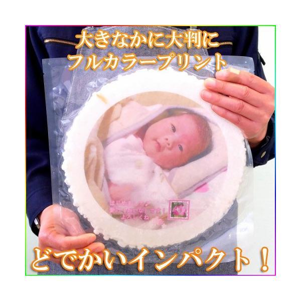 プリント南部大判せんべい22センチ印刷・かに味4枚セット(オリジナル オーダーメイド) uminekotayori